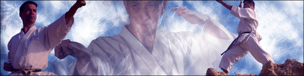 Forum du site www.karate-traditionnel.fr.st